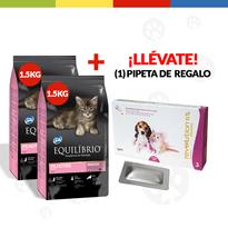 pack-equilibrio-gato-kittens-15-kg-1-unid-pipeta-revolution-1-2-kg-4